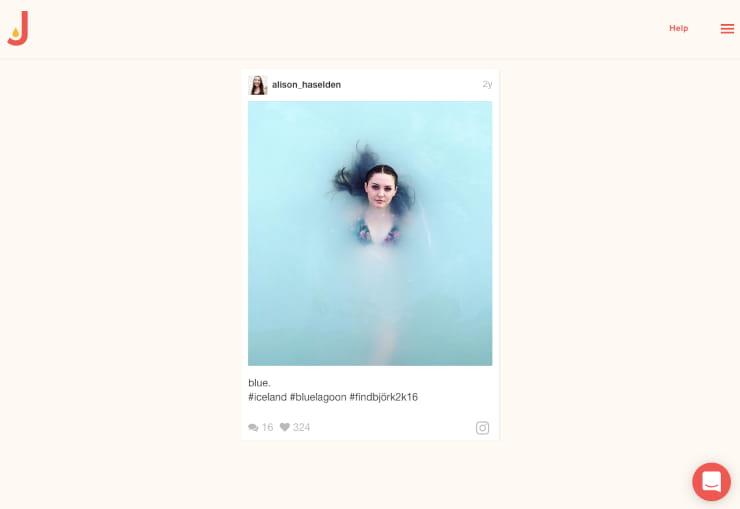 social media widget image
