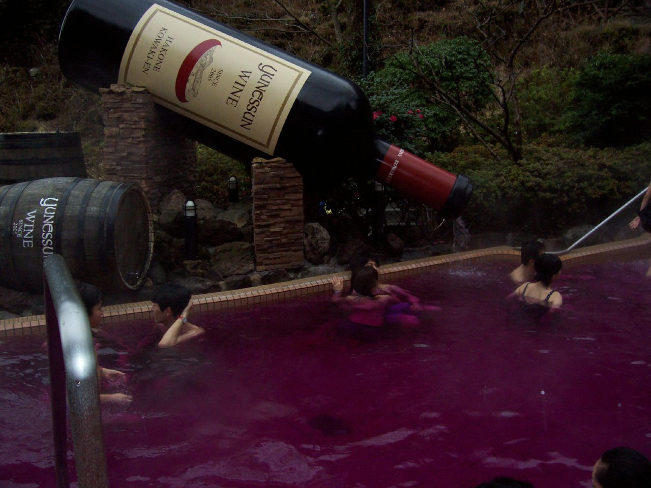 Among all the cool Tokyo attractions the Red Wine Hot Springs may be the most fun