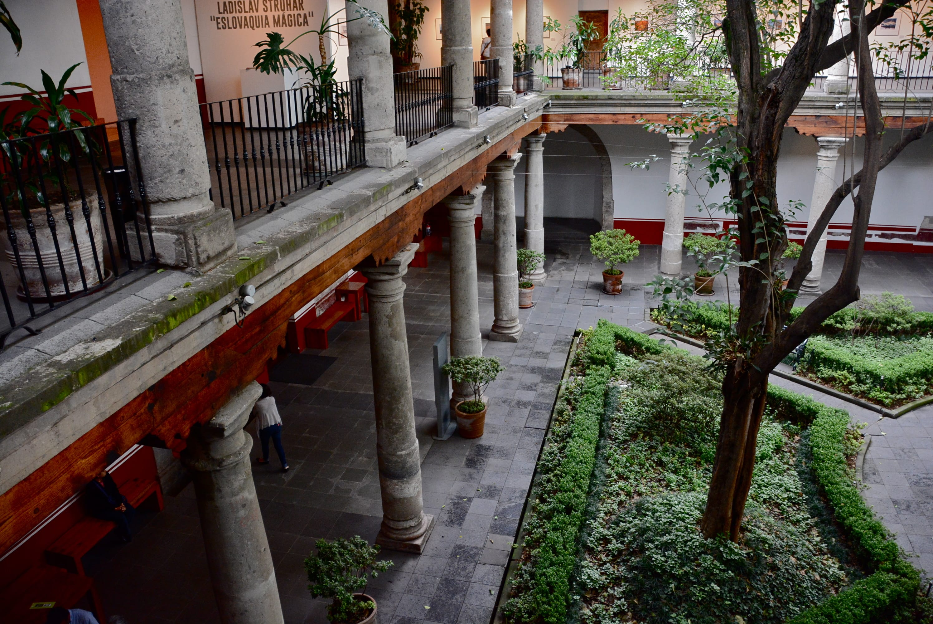 """For a unique Mexico City tour, think about taking the NYT's """"See Everything"""" tour"""