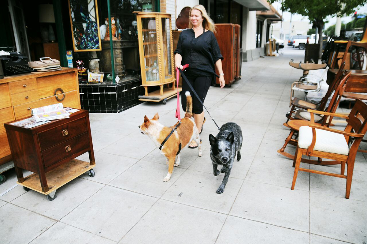 Image of The Best Dog-Friendly Patios in L.A.