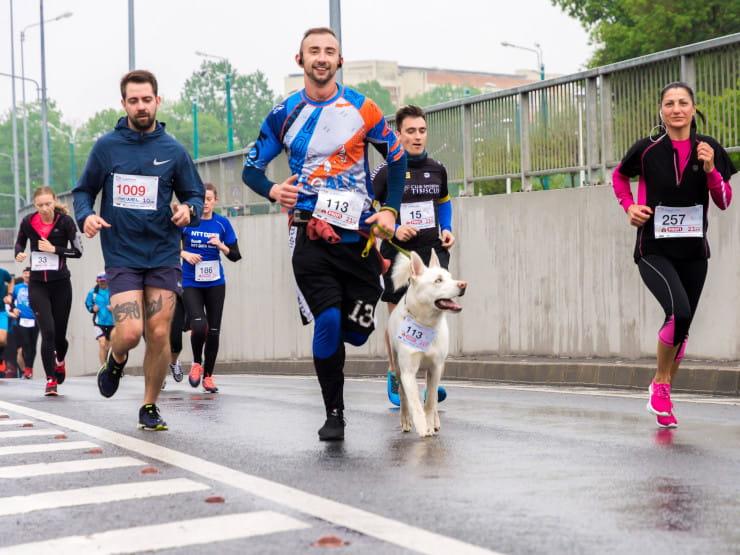 charity marathon runners