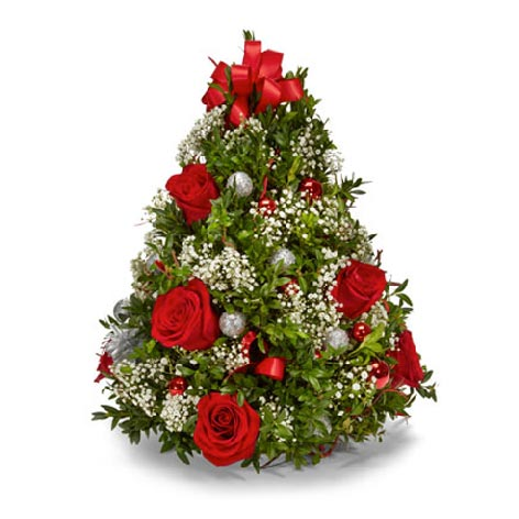 Red roses and babies breath mini live Christmas tree deliveries