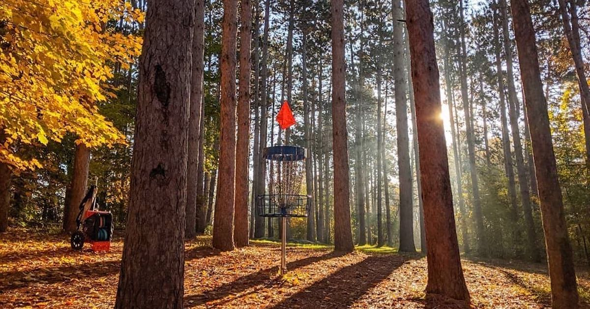 A blue disc golf basket among trees on a sunny fall day