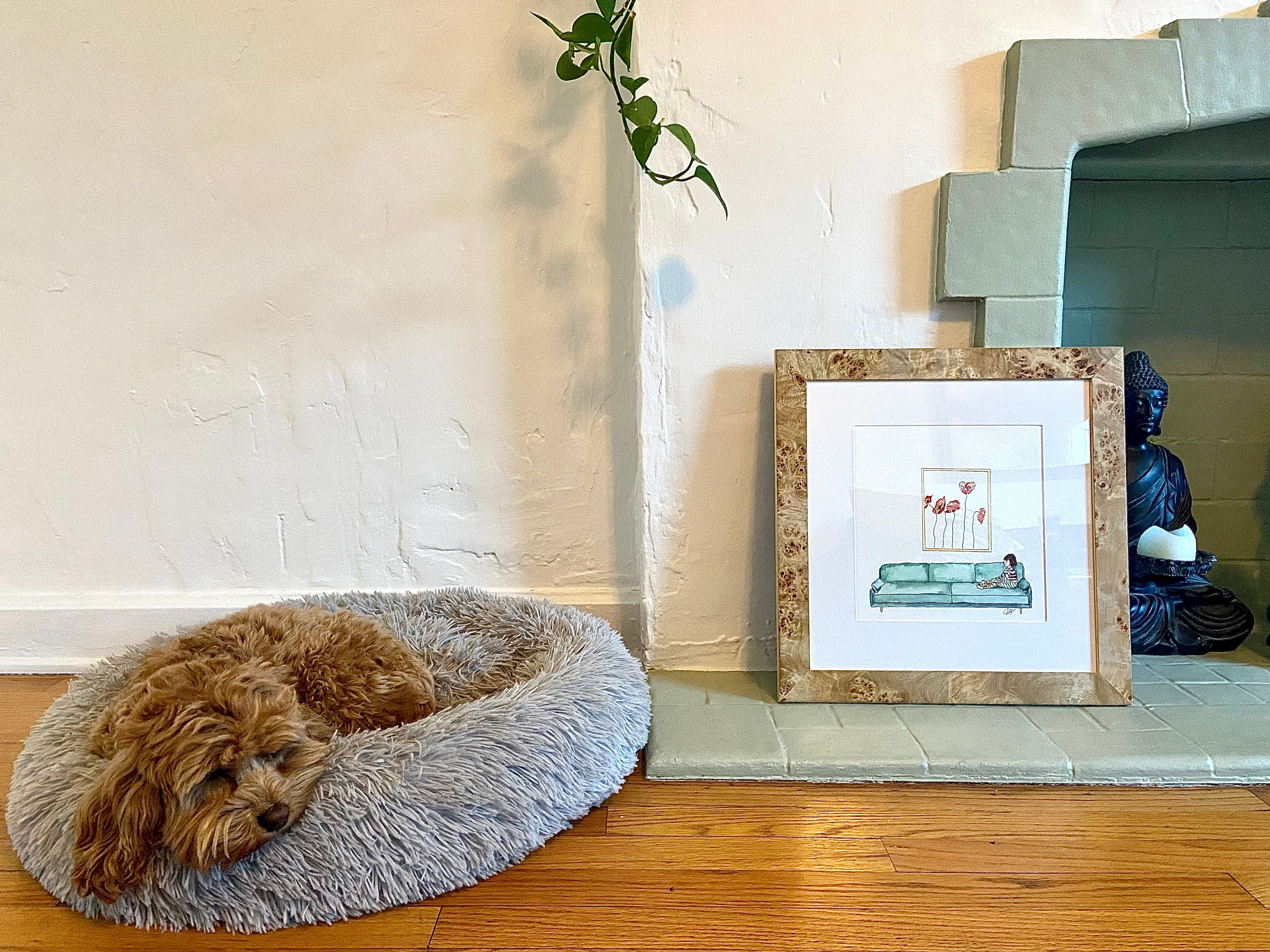 framed watercolor illustration from children's book with dog