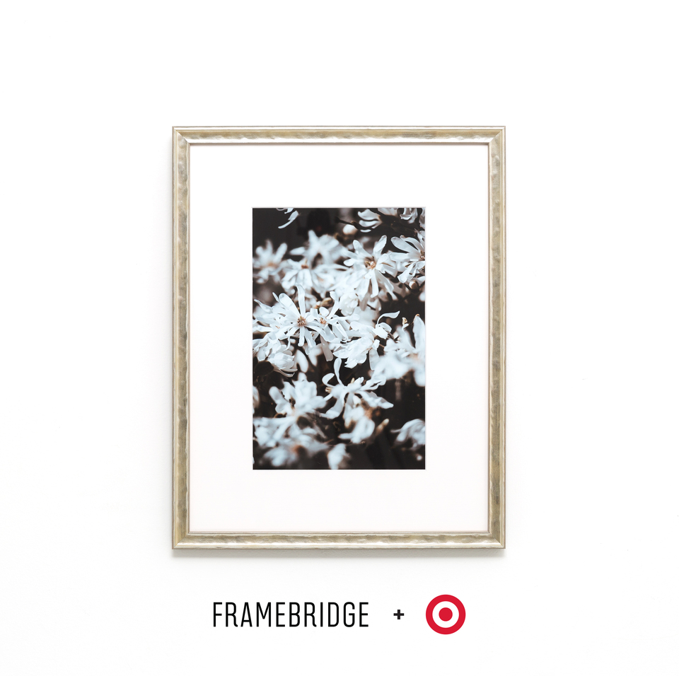 Hammered silver frame for Target Collection