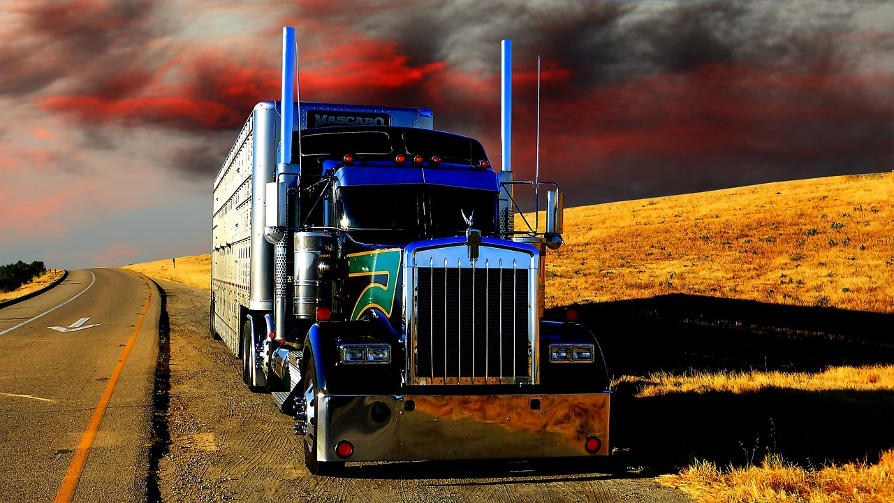 Truck Driver Shortage: Problems, Causes, and Solutions