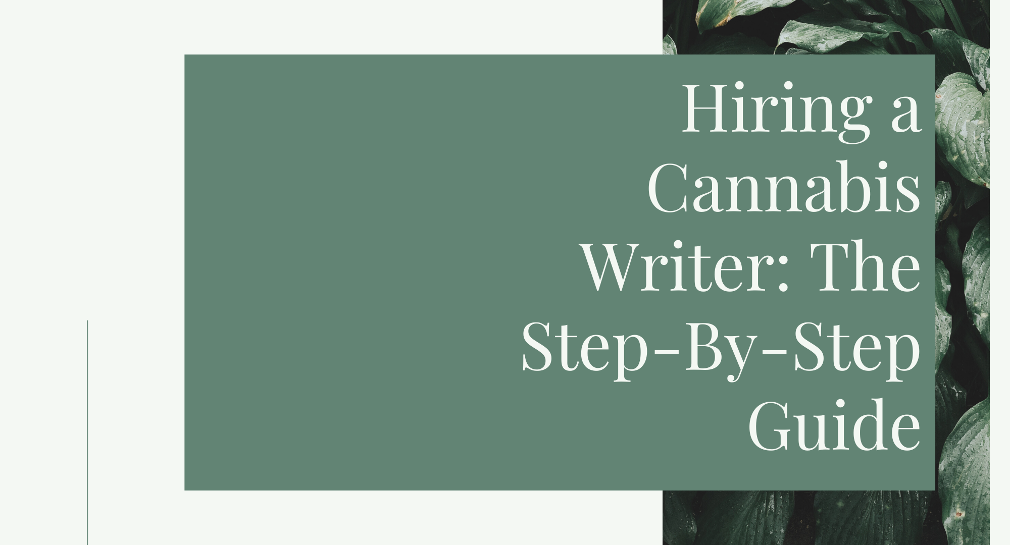 Hiring a Cannabis Writer: The Step-By-Step Guide