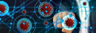 11 Coronavirus Dashboards and Data Reports