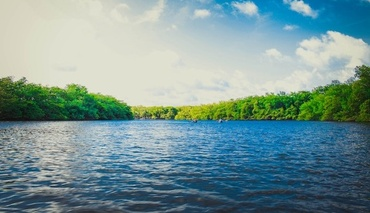 Amazon Athena is Bringing Data Lakes Back