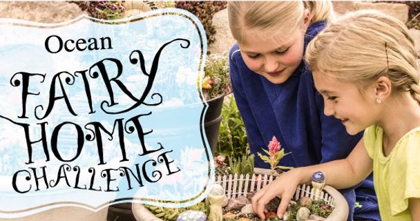 Fairy Homes Challenge