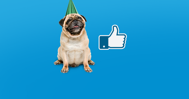 We've reached 15K Facebook likes!