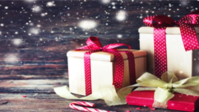 Fairy homes challenge – Christmas edition