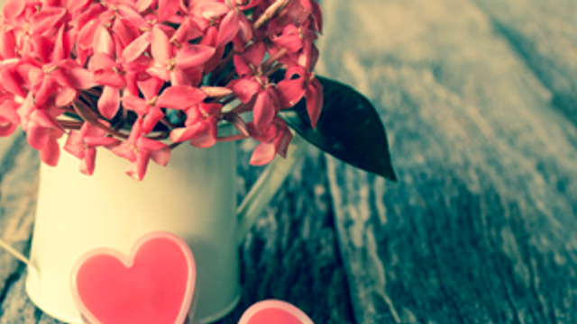 Valentine's Day – what does it mean to you?
