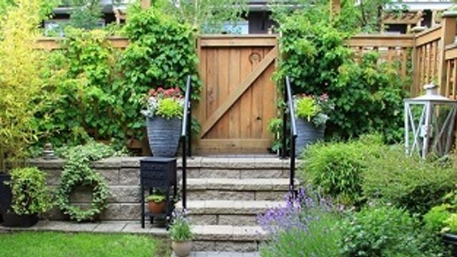 Thursday's Home Improvement Tips: The garden