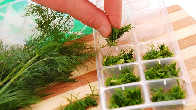 herbs in ice cube tray