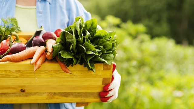 20 tips to shop organic on a budget