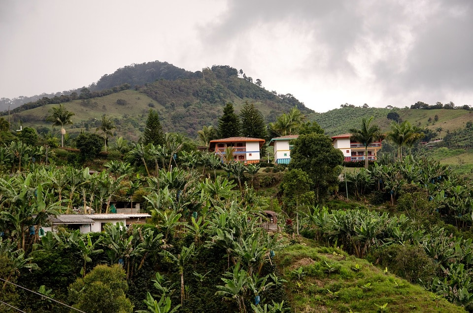 coffee farm what to see in Colombia