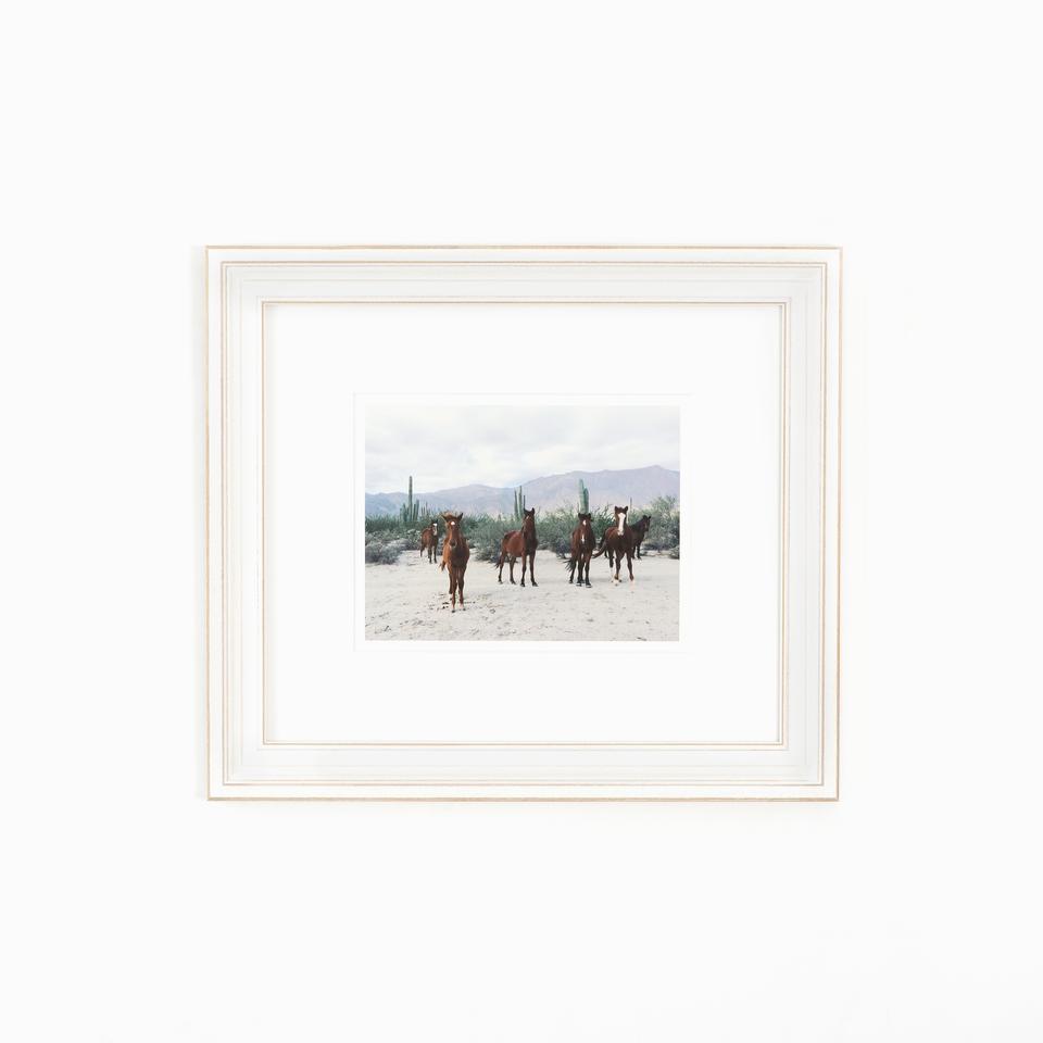 montauk product photo, distressed white frame