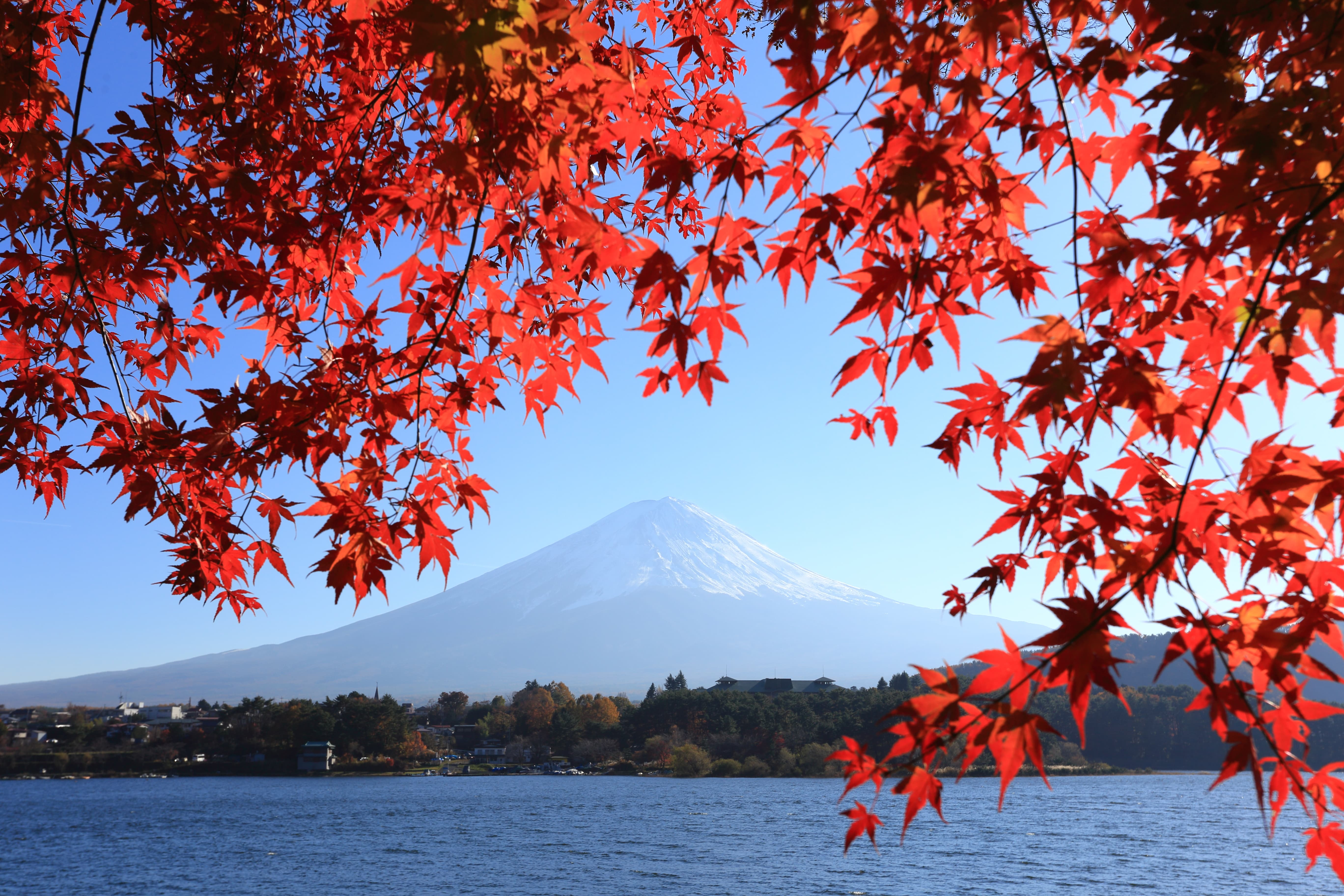 Mt Fuji is a must do in Tokyo Japan
