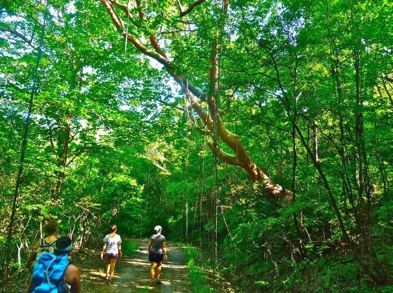 Hiking Medellin