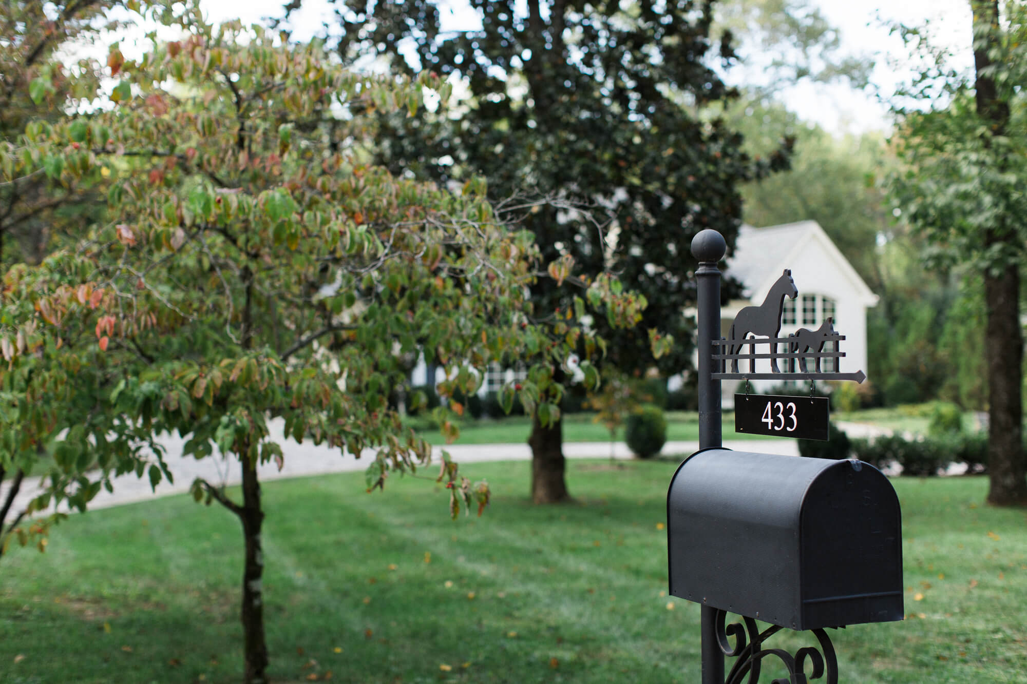 black-mailbox-in-front-of-home