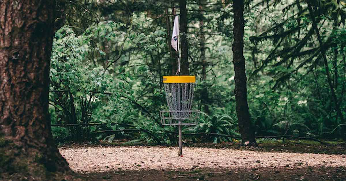 Disc golf basket set in a small clearing in an old-growth evergreen forest