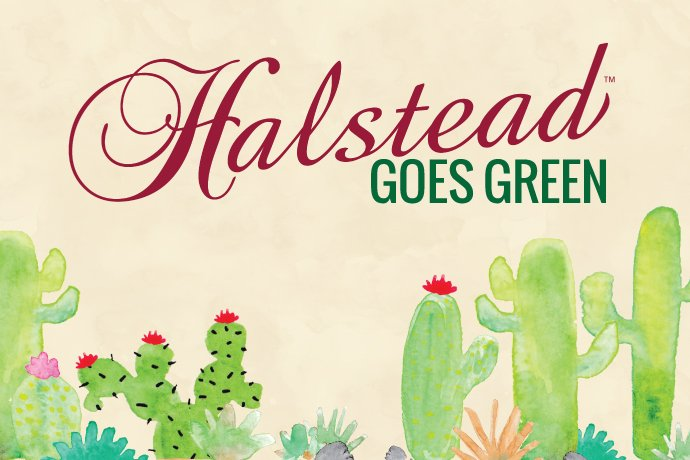 Halstead recently invested in solar energy and other eco-friendly inititatives to become a more sustainable jewelry supplier.