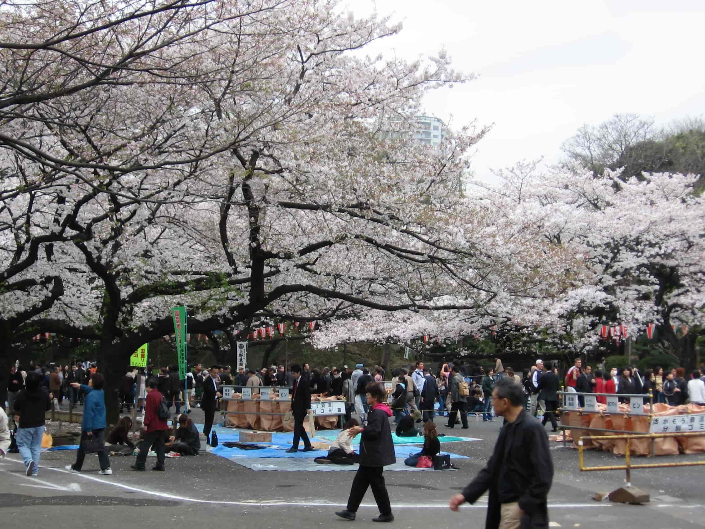 Ueno Tokyo Japan where to stay
