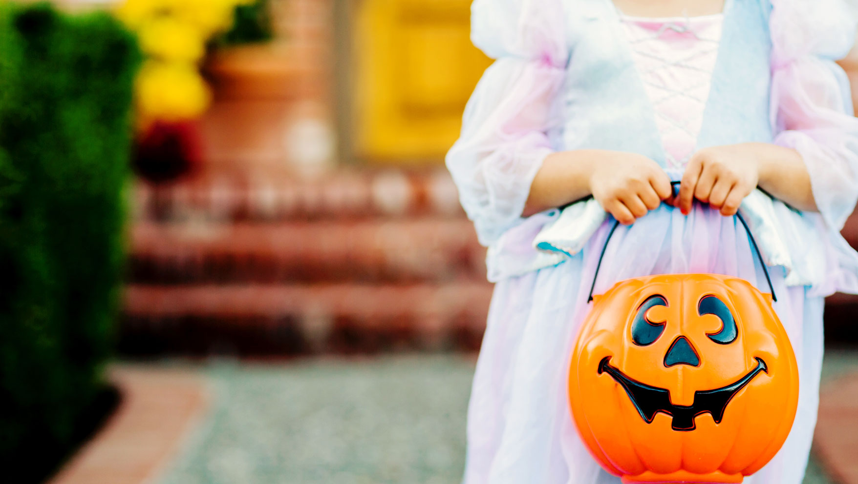 Everything You Need to Know about Halloween