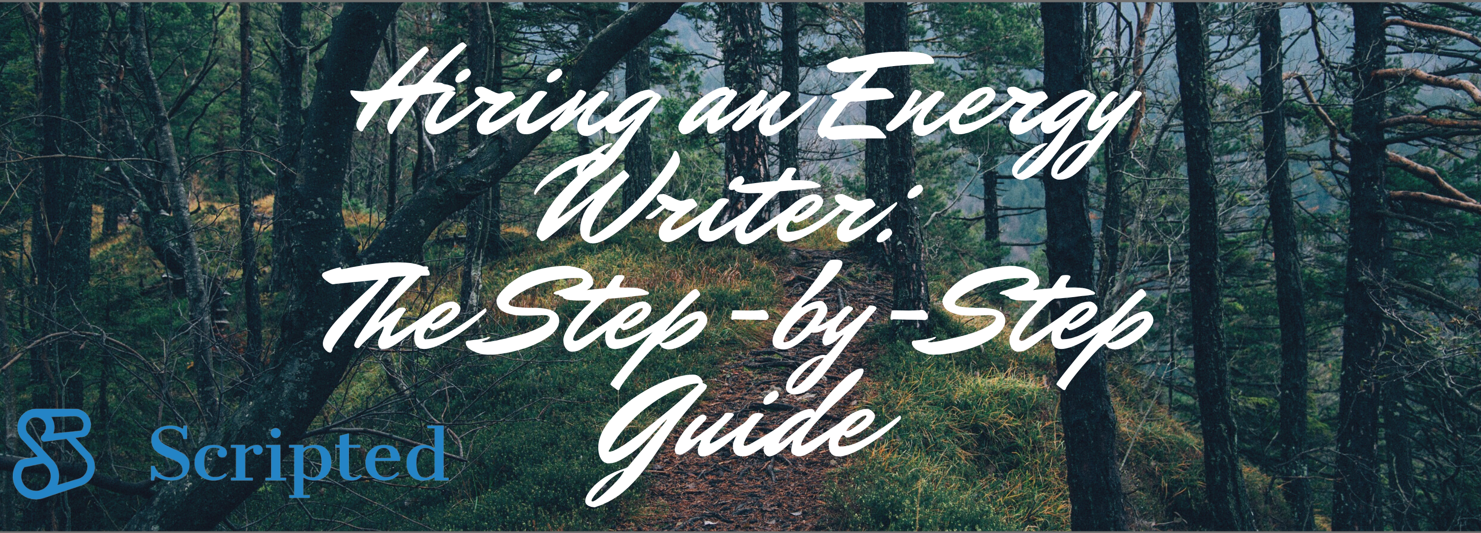 Hiring an Energy Writer: The Step-by-Step Guide