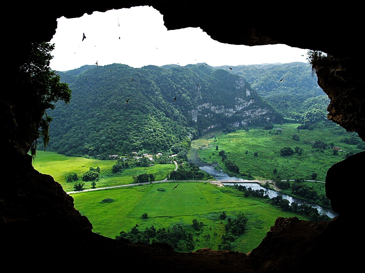 La Cueva Ventana is one of the places to go in Puerto Rico