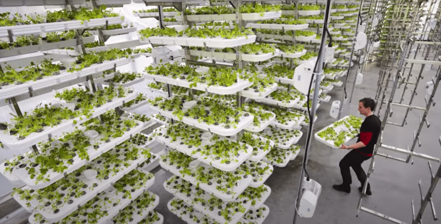 vertical farming-min.png