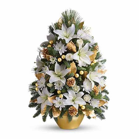 Gold and white lily mini live Christmas tree deliveries