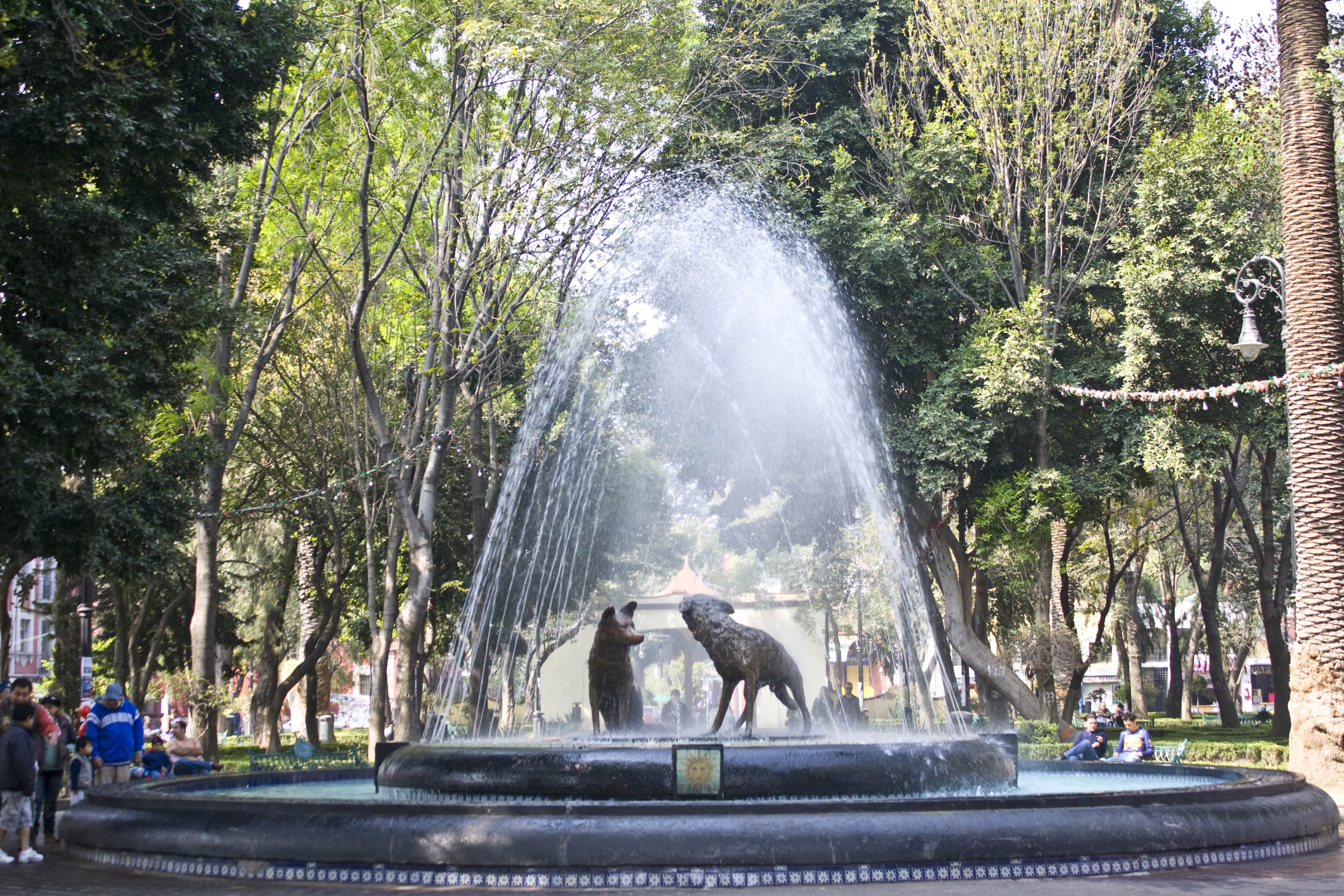 TripAdvisor reviews of Mexico City highlight Coyoacan and Museo Frida Kahlo