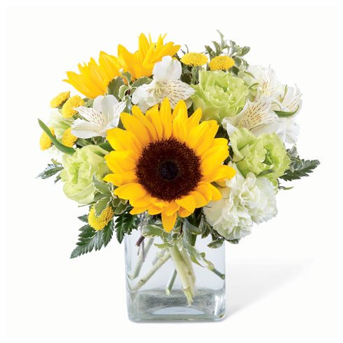 Sunflower and jade light green carnations with white alstroemeria bouquet