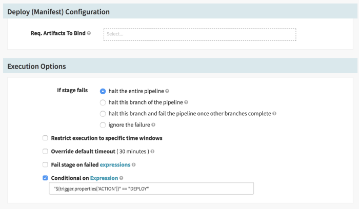 Expression Validation for Deploy Stage