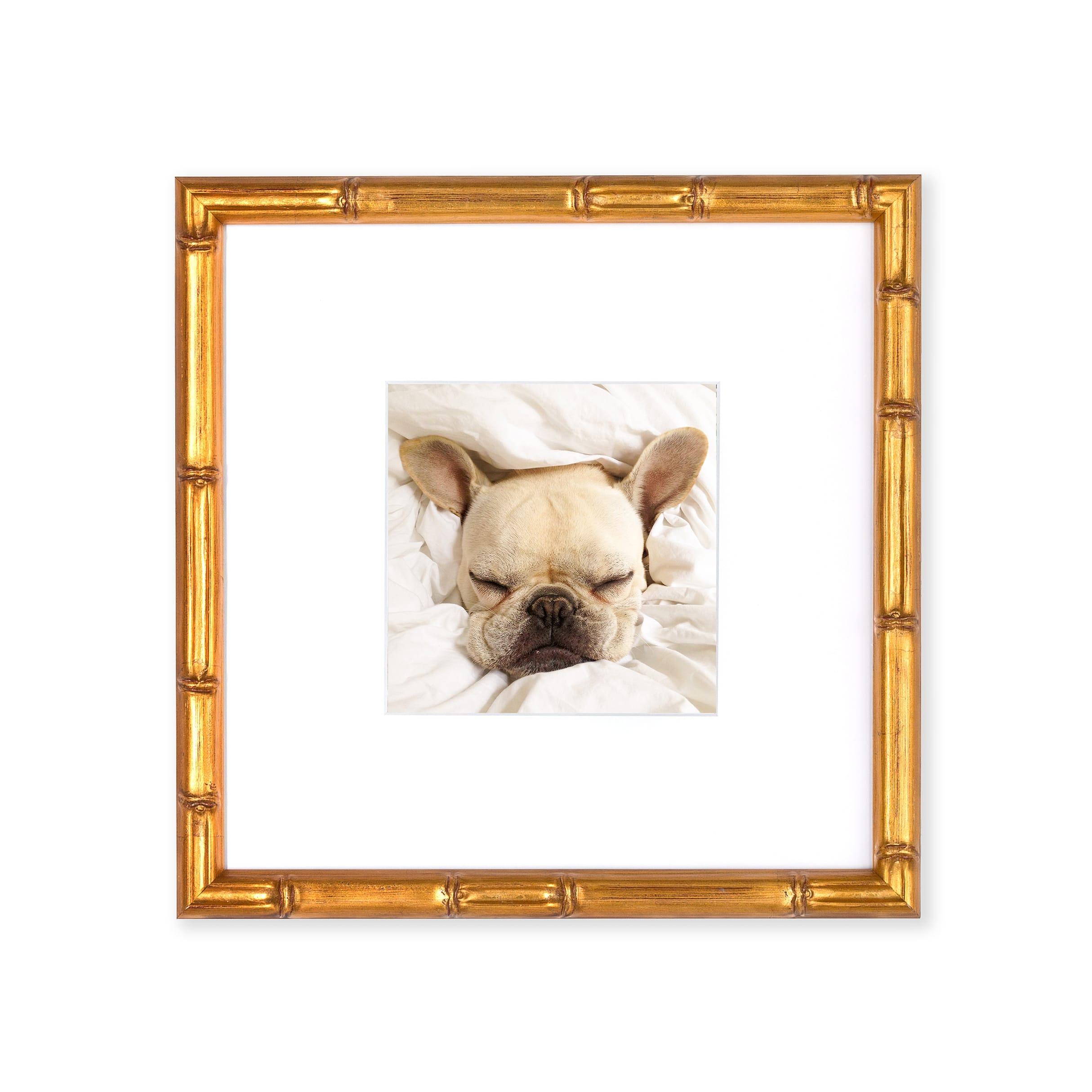 Print & Frame Instagram Photos for $39 each | Framebridge