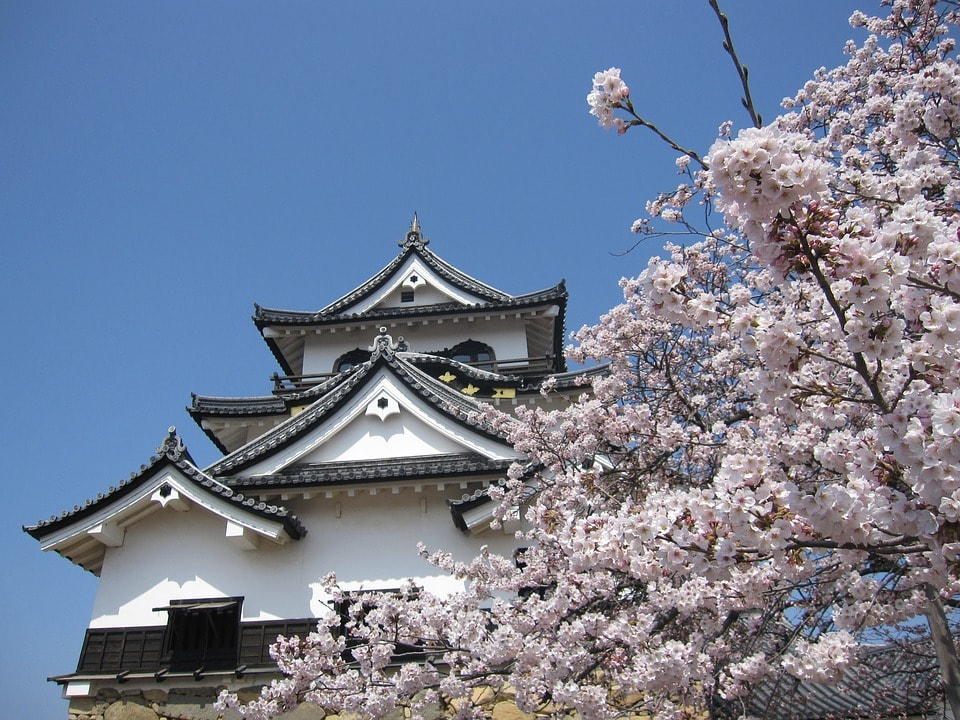 best time to visit japan in the spring