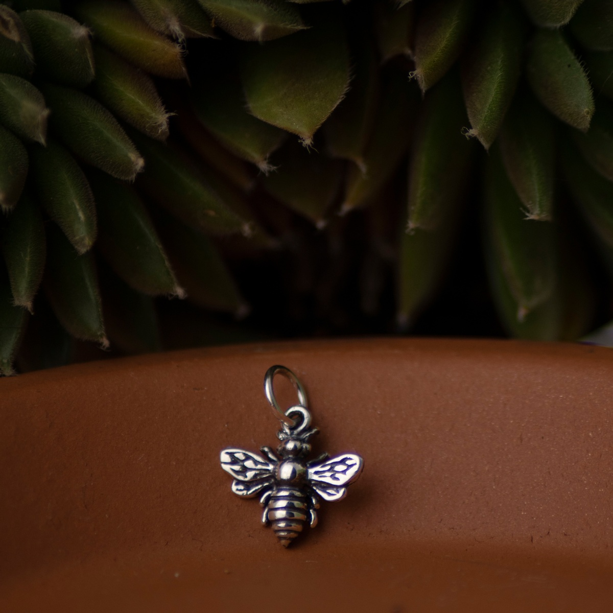 Raw image of bee charm with a succulent
