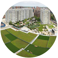 extensive green roof over parking garage in Flushing, Queens, New York with rectangles of Sedum vegetation and synthetic turf